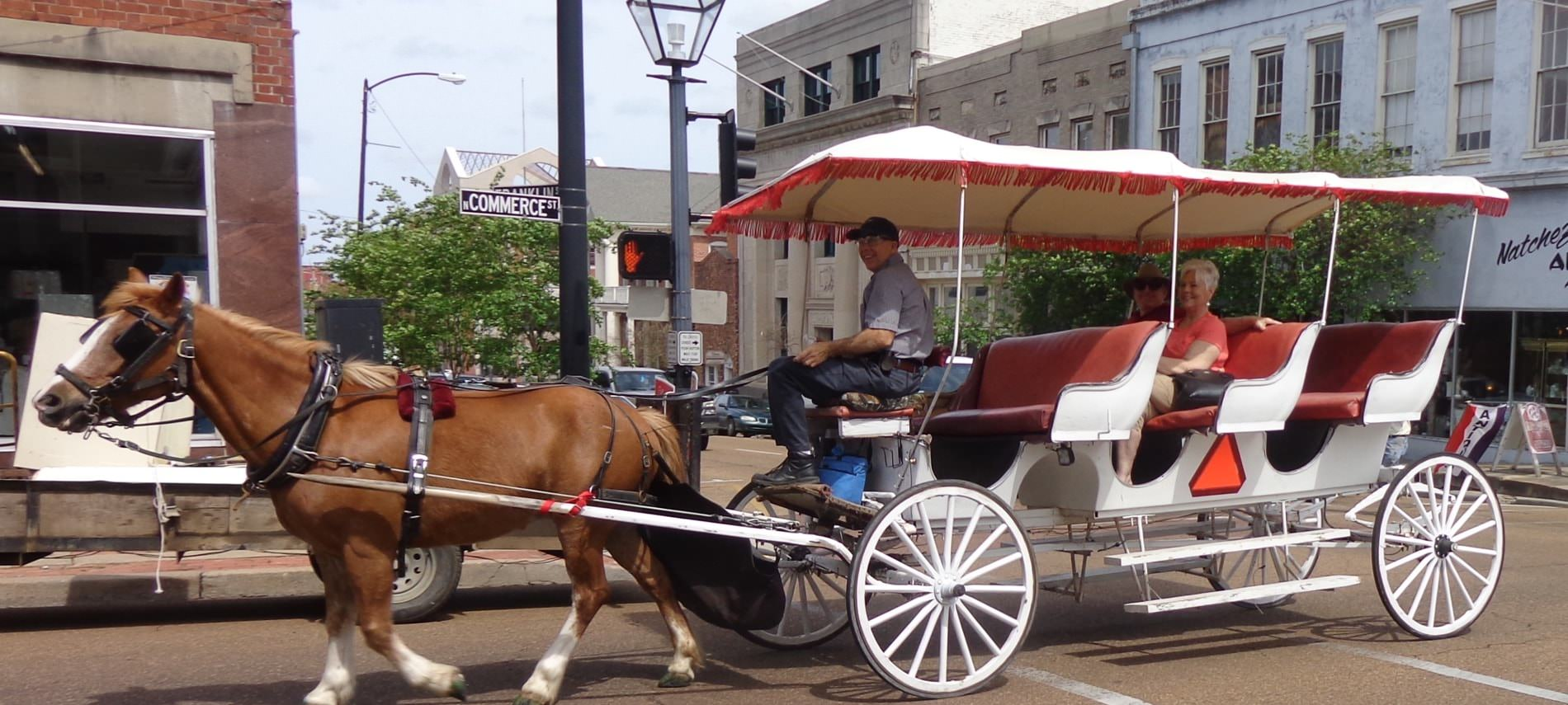 A man and two passengers enjoying a carriage ride pulled by a beautiful brown horse downtown Natchez